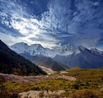 Manaslu Mountain near Bimthang Nepal  by Mohan Duwal x-post rNepalPics