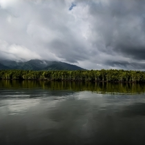 Mangrove Forests of Langkawi Malaysia