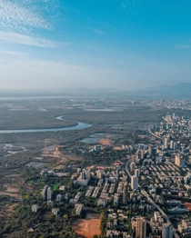 Mangroves and Mumbai suburbs