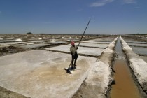 Marakkanam salt pans in India