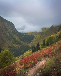 Maroon Bells  pass loop- foggy hiking during our backpacking trip a few years ago  x
