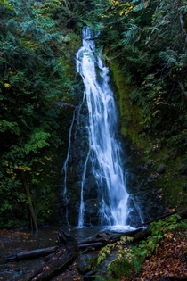 Marymere Falls in Olympic National Park Washington