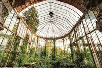 Massive glasshouse making its slow return to nature