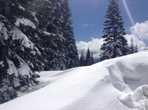 Massive snow in Mount Shasta