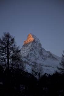 Matterhorn in the morning  OC