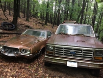 Maybe an  Ford and a Gran Torino in central Pennsylvania No Clint Eastwood around