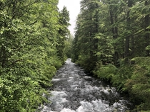 McKenzie River in Foster Oregon  x
