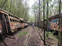 Me and my friends in windber PA exploring abandoned transit cars
