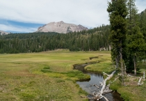 Meadow in Lassen Volcanic Park CA