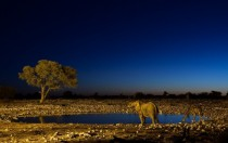 Meeting at waterhole