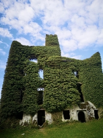 Menlo Castle in Galway Ireland built in  ruined due to a fire in  still hauntingly beautiful in