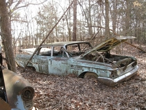 Mercury Meteor Crashed in the Woods Arkansas  Album and adjacent Oldsmobile album in comments