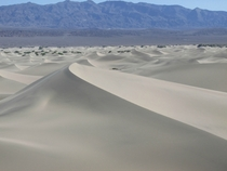 Mesquite Flat Sand Dunes Death Valley California x