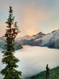 Mid summers eve on Mt Rainer Washington USA