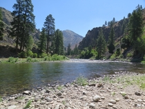 Middle Salmon Fork River Idaho