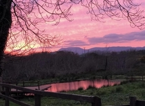 Might be a bit basic compared to the other beautiful posts Ive seen but beautiful pink sky in the south of Ireland