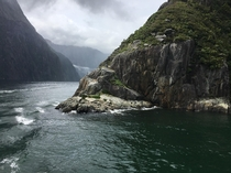Milford Sound in Fiorland New Zealand Eighth Wonder of the World