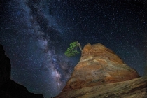 Milky Way and Sandstone Zion NP