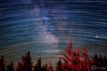 Milky Way and Star Trails composite I did over some trees at good ol Spruce Knob WV