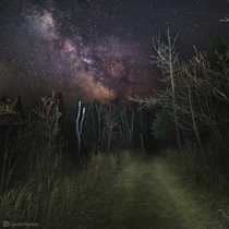 Milky way over a forest trail Captured on a night hike at Split Rock Lighthouse State Park in Minnesota