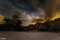 Milky Way Over Joshua Tree CA  OC