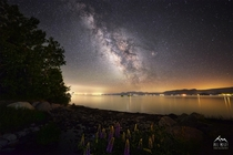 Milky Way over Lake Tahoe last week And Lupines