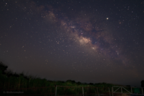 Milky Way over Louisiana wetlands