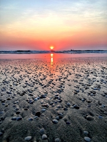 Miniature shells and sunset on Varca Beach  Goa India  x