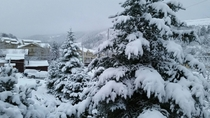 Minturn Colorado this morning