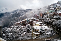 Minutes after Snowfall Shimla India OC