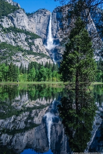 Mirror image of Yosemite Falls CA