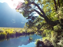 Mirror Lake New Zealand