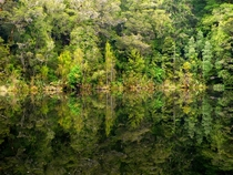 Mirror Tarn Oparara NZ