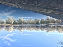 Mirrored in a bavarian lake in winter