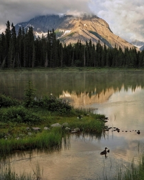 Mist Rising Off A Still Lake One Early Summer Morning Canadian Rockies Alberta