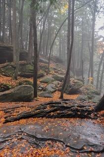 Misty Autumn Day in the Hocking Hills of Ohio