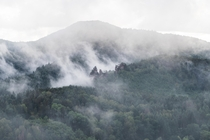 Misty Mountains by IG Farbik