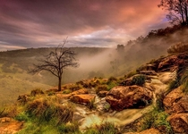 Misty sunrise in the hills of Perth WA OC x