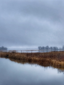 Misty winter day on the Rideau River in Ontario Canada  OC