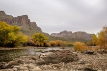 Misty Winter day on the Salt River Arizona