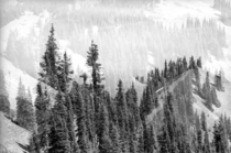 mm Double Exposure of Hurricane Ridge WA