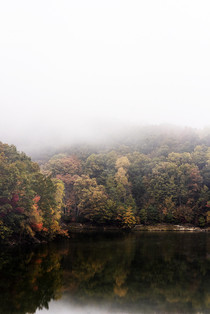 Mohican State Park Ohio in the fog