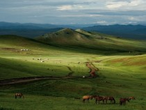 Mongolian Steppe  photo by Mark Leong