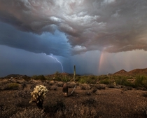 Monsoon Season Arizona