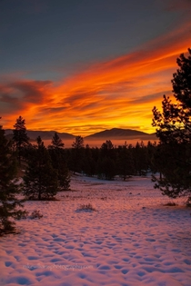 Montana sunrise photo by Mike Williams Photography