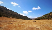 Montane grassland can be found as high as  meters in the Ethiopian Highlands