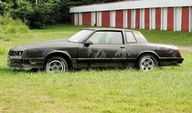 Monte Carlo SS left to rot
