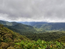 Monteverde Cloud Forest in central Costa Rica The northern trade winds blow forcefully all day every day constantly combing the roof of the forest smooth and level
