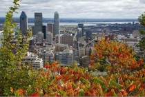 Montreal from the Mont Royal