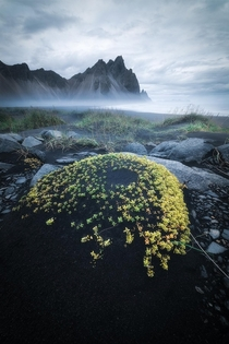 Moody fall days in Iceland  tristantodd